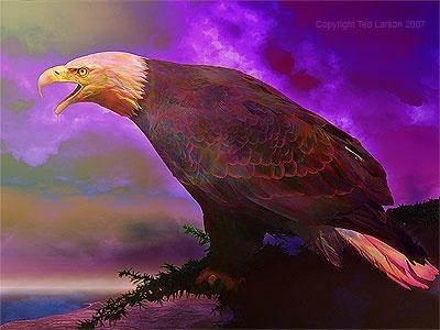 ezek 17 eagle
