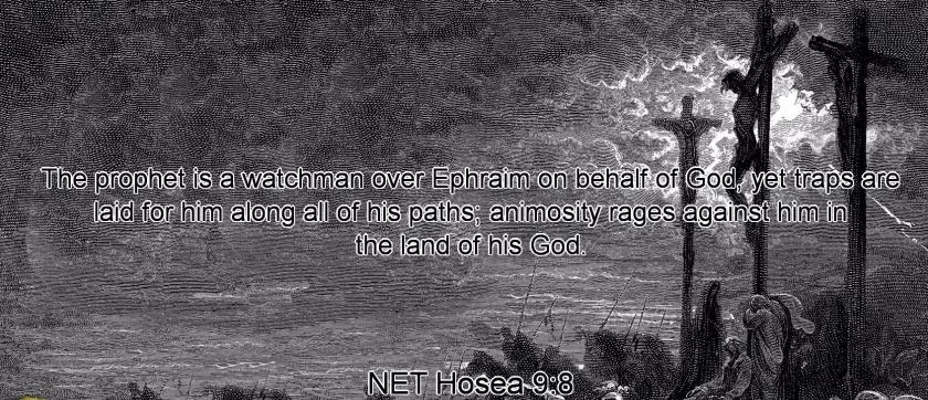 Hosea 9-8
