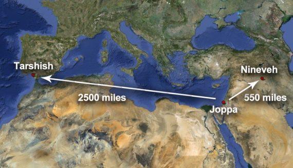 Jonah-1-3-570x328