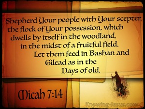 Micah 7-14 Shepherd Your People brown