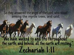 zechariah 1-11
