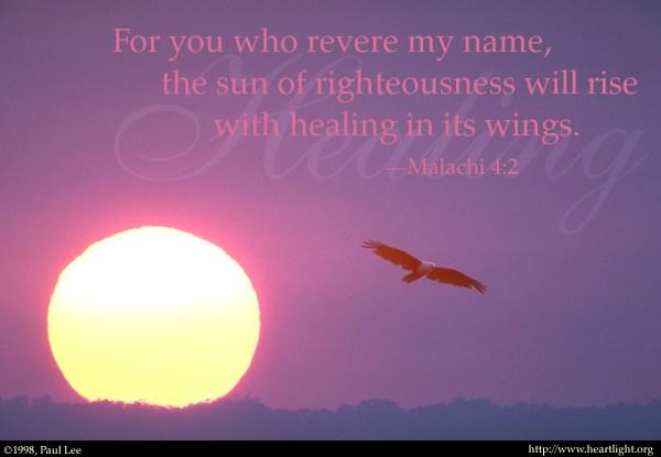 Healing in HisWings